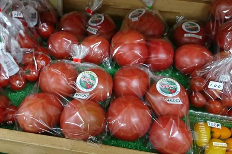 日野市産のひの樽トマトの普通サイズ