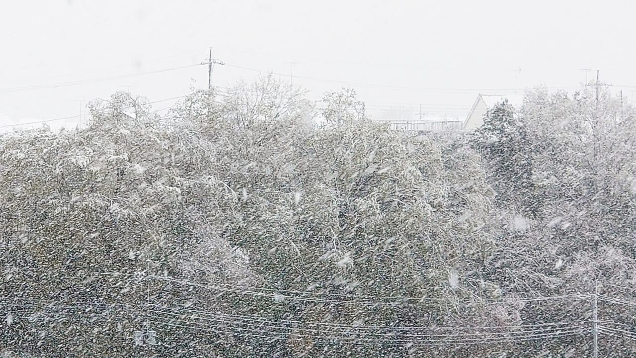 東京 日野 市 天気